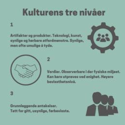kulturens_tre_nivaaer_organisasjonskultur